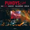 Puhdys - Yaketi Sax (Live) bild