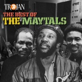 The Maytals - Sun Moon and Star
