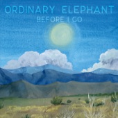 Ordinary Elephant - Lady in the Elevator