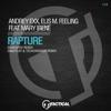 Andrey Exx & Elis M. Feeling - Rapture Feat. Mary Irene (Dim2Play & Techcrasher Remix) artwork
