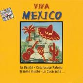 Mexican Folkband - Leyenda De Los Volcanes