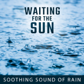 Waiting for the Sun: Soothing Sound of Rain for Relaxation, Meditation, Stress Relief, Harmony of Senses
