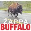 Buffalo (Live at Buffalo Memorial Auditorium, 1980)
