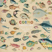 Cosmo Sheldrake - Birthday Suit