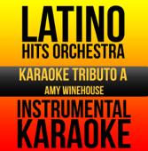 Instrumental Karaoke Series: Amy Winehouse