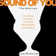 Sound of You (Deep Session by Riccicomoto)