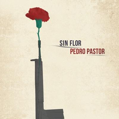 Sin Flor - Single - Pedro Pastor