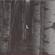 Come Silence - Dag Rosenqvist