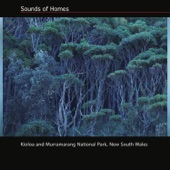 Sounds of Homes - Cousens Gully Creek
