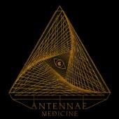 An-Ten-Nae - Always Find the Hidden Path