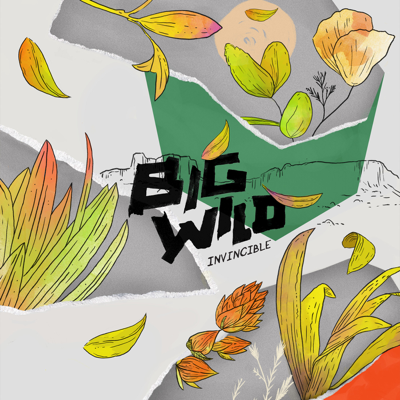 When I Get There - Big Wild song