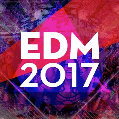 Edm 2017 - Various Artists album