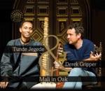 Tunde Jegede & Derek Gripper - Where Rivers Meet