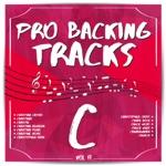 Pro Backing Tracks C, Vol. 17