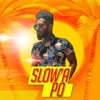 Slow a Po feat Roshane Young Single