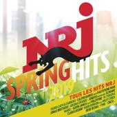 NRJ Spring Hits 2019 - Multi-interprètes Cover Art