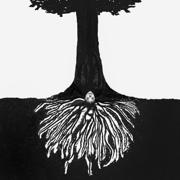 a tree planted by water - Eryn Allen Kane - Eryn Allen Kane