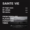 From Desolate Places and Forgotten Times - Single - Sainte Vie