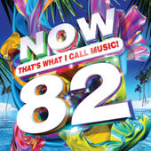 Now That s What I Call Music Vol 82 Various Artists