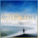 Wild Blue, Pt. 1 - Hunter Hayes