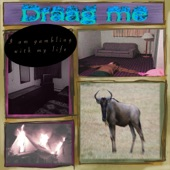 draag me - Why Do You Feel Nothing?