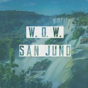 W.O.W. - Single