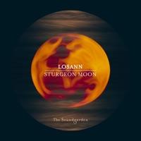 Sturgeon Moon - LOSANN - STAN KOLEV