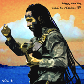 [Download] Reggae in My Head MP3
