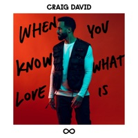 When You Know What Love Is - CRAIG DAVID