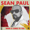 Sean Paul - When It Comes to You artwork