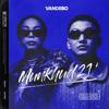 Vandebo - Huuhdiin 100 artwork
