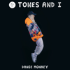 Tones And I - Dance Monkey artwork