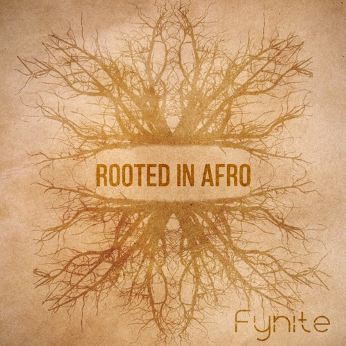 Rooted in Afro EP Image