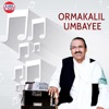 Ormakalil