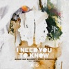 I Need You to Know (feat. Ifimay) by Armin van Buuren & Nicky Romero