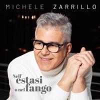 Michele Zarrillo - Nell'estasi o nel fango artwork