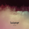 Black Passage - The Veil artwork