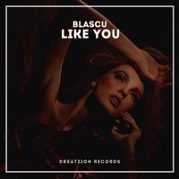 Like You! - BLASCU