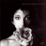 Kate Bush - The Fog