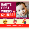 Erika Levy - Baby's First Words in Chinese (Unabridged)  artwork