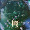 Jung - Jeg Skal Nok Vente artwork