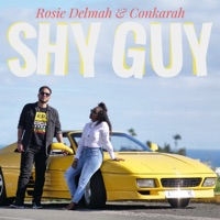 Shy Guy - Single