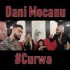Dani Mocanu - #Curwa artwork