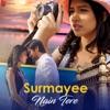 Surmayee Nain Tere