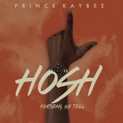 Hosh (feat. Sir Trill) [Edit]