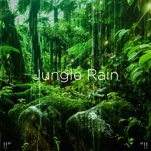 "Rain Sounds & Rain for Deep Sleep - !!"" Jungle Rain ""!!"