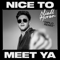 Nice to Meet Ya (Diplo Remix) - Niall Horan & Diplo lyrics