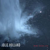Jolie Holland - The Love You Save