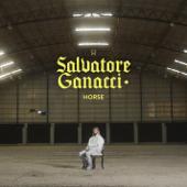 Horse/Salvatore Ganacciジャケット画像