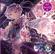 Persona (with Senya) - Yuuhei Satellite